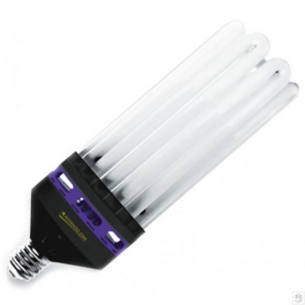 CFL Grow Bulbs