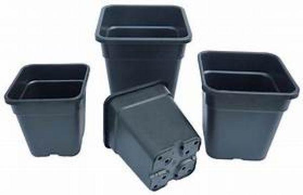 Premium Square Pots