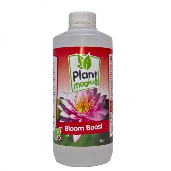 Bloom Book Pk ltr