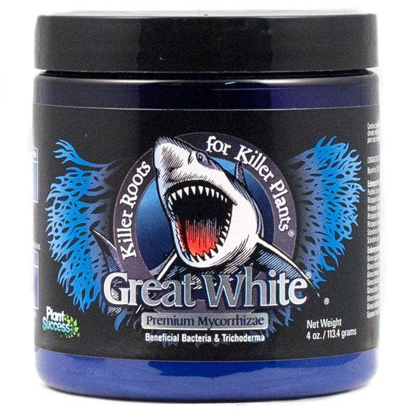 Plant Success Great White Shark